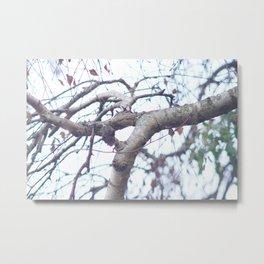 Neon Tree Metal Print