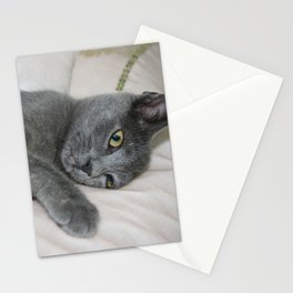 Russian Blue Kitten Relaxed On A Bed Stationery Cards
