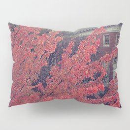 Library in Red Pillow Sham