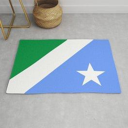 flag of mato grosso do sul Rug