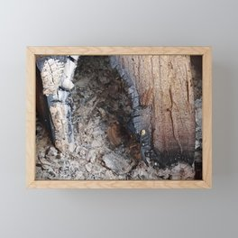 burnt wood with ash arty photo Framed Mini Art Print