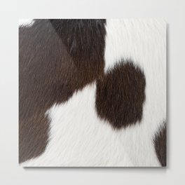 Brown and White Cowhide, Cow Skin Pattern, Farmhouse Decor Metal Print