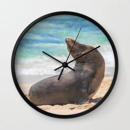 Sea lion sunbathing on beach Wall Clock