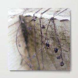 Whites & Purples Metal Print