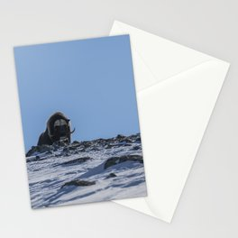 Musk Ox portrait Stationery Cards