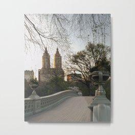 Central Park 8 Metal Print