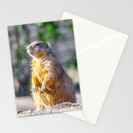 The Good Gopher Stationery Cards