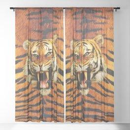 Tiger Roar's Sheer Curtain