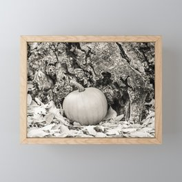 Little Pumpkin 3 Framed Mini Art Print
