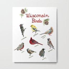 Wisconsin Backyard Birds Watercolor Chart Metal Print