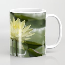 Longwood Gardens - Spring Series 294 Coffee Mug