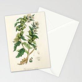 Henbane (Hyoscyamus niger) illustration from Medical Botany (1836) by John Stephenson and James Mors Stationery Cards