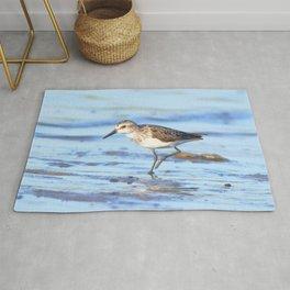 Watercolor Bird, Least Sandpiper 03, Janes Island, Maryland Rug