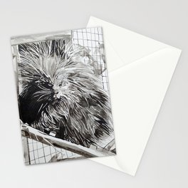 Alaskan Porcupine Stationery Cards