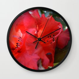 Red Rhododendron Wall Clock