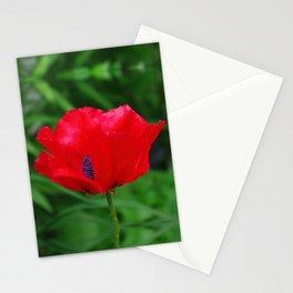Red oriental poppy flower Stationery Cards