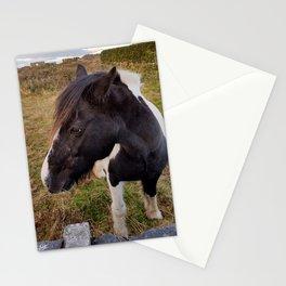 Horse - Aran Islands,Inis Mor, Ireland Stationery Cards