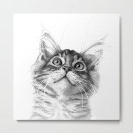 Kitten looking up G115 Metal Print