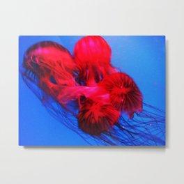 Underwater Ballerinas Metal Print