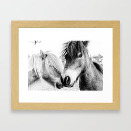 Almo and Billy Bear Framed Art Print
