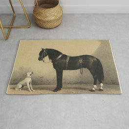 Curious Dog and Horse - White Dog and Black Orloff Horse Looking at Each Other (Orloffer) Rug
