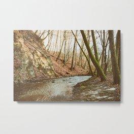 Peaceful Winter Woods Metal Print