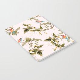 Birds in habitat Notebook