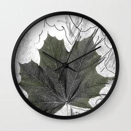 Norway Maple - Érable de Norvège - Acer platanoides Wall Clock
