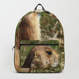 Black-tailed Prairie Dog Pose Backpack
