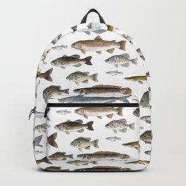 A Few Freshwater Fish Rucksack
