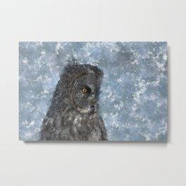 Contemplation - Great Grey Owl Portrait Metal Print