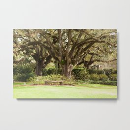 Place of Rest Metal Print