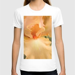 Bearded Iris Orange Harvest T-shirt