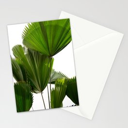 Palm Tree Photography | Landscape | Palm Leaf | Tropical Leaves | Green Tropical Leaves Stationery Cards