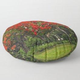 Royal Poinciana Tree Floor Pillow