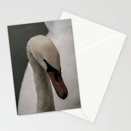 Wet Feathers Stationery Cards