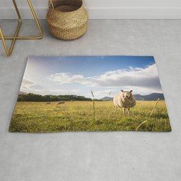 Sheep grazing Lake District, England Rug