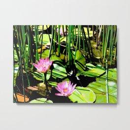 The Pond I Metal Print