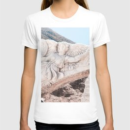 European City Ruins | Ephesus Carved Statue Rock Muted Baby Blue Tan Colors Historical Wanderlust T-shirt