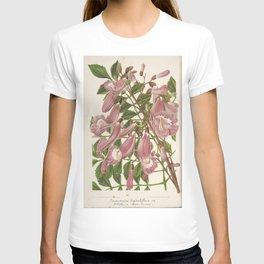 Flower jacaranda digitaliflora6 T-shirt