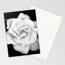 Gardenia Black and White Stationery Cards