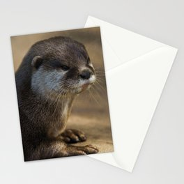 Otter Close-Up Stationery Cards