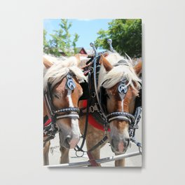 Working Horses at Solvang California Metal Print
