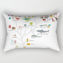 Evolution in biology, scheme evolution of animals on white. children's education back to scool Rectangular Pillow