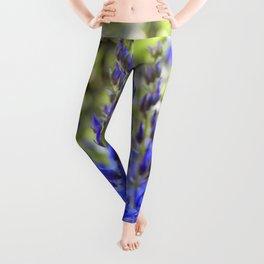 Starry Blue Leggings