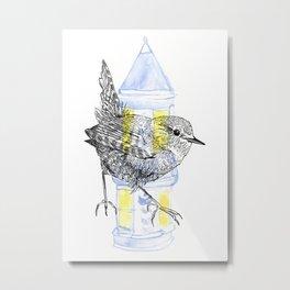 Urban Wren Metal Print