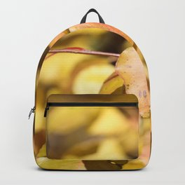 Late Fall Hawthorn Leaves Backpack