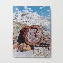 Petrified Desert Metal Print