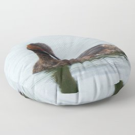 Eared Grebe Floor Pillow