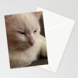 Artemis Posing 9 Stationery Cards